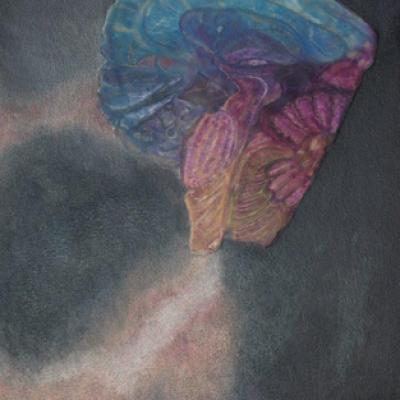 A renewed mind - Mixed media on canvas 300 cm x 500 cm R2500
