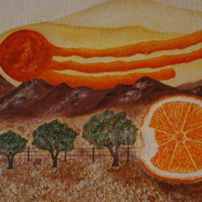 Dreaming of oranges R1600