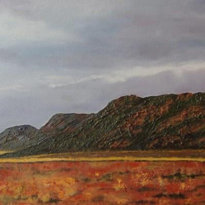 Richtersveld landscape 450 cm x 650 cm R2750