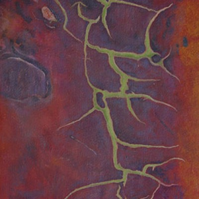Madrone – Arbutus Menziesii (#174) - (Oil on canvas) A series from a Book of Photographs called Bark By Cedric Pollet - Size 20 X 30 R995