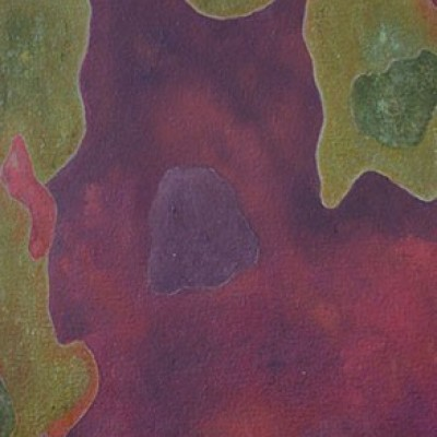 Spotted Gum –Corymbia Maculata - (Oil on canvas) A series from a Book of Photographs called Bark By Cedric Pollet - Size 20 X 30 R995