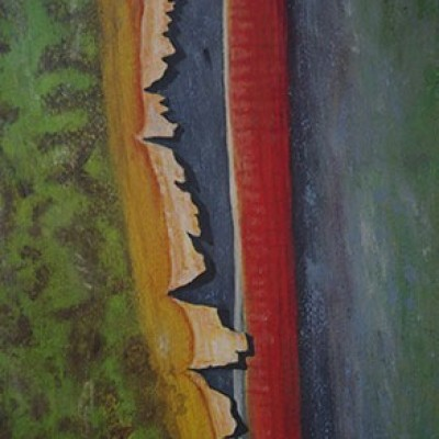 Traveller's Tree - (Oil on canvas) A series from a Book of Photographs called Bark By Cedric Pollet - Size 20 X 30 R995